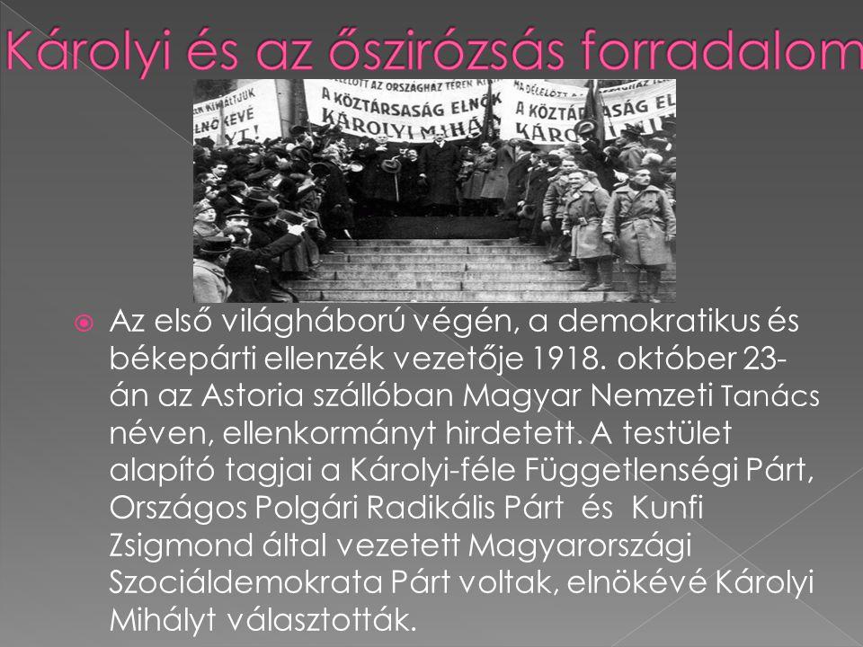  Az első világháború végén, a demokratikus és békepárti ellenzék vezetője 1918. október 23- án az Astoria szállóban Magyar Nemzeti Tanács néven, elle