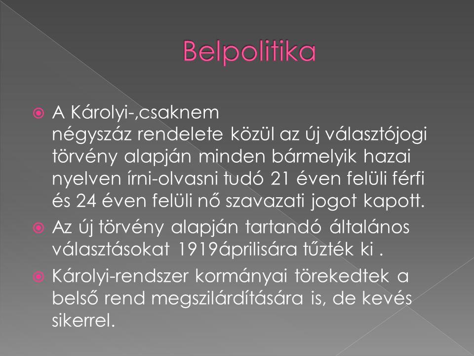  A Károlyi-,csaknem négyszáz rendelete közül az új választójogi törvény alapján minden bármelyik hazai nyelven írni-olvasni tudó 21 éven felüli férfi