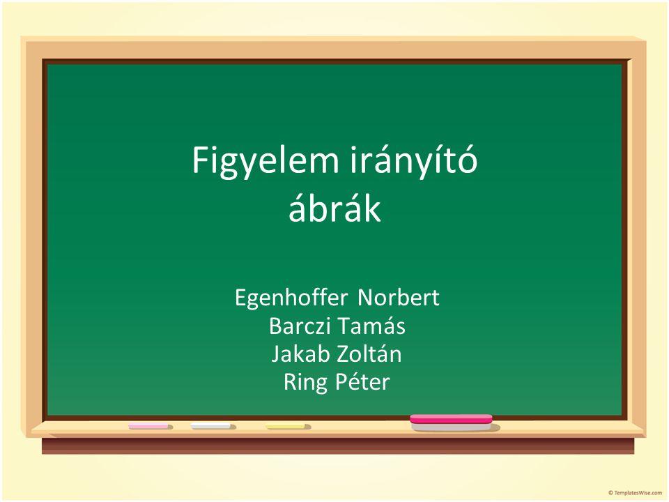 Figyelem irányító ábrák Egenhoffer Norbert Barczi Tamás Jakab Zoltán Ring Péter