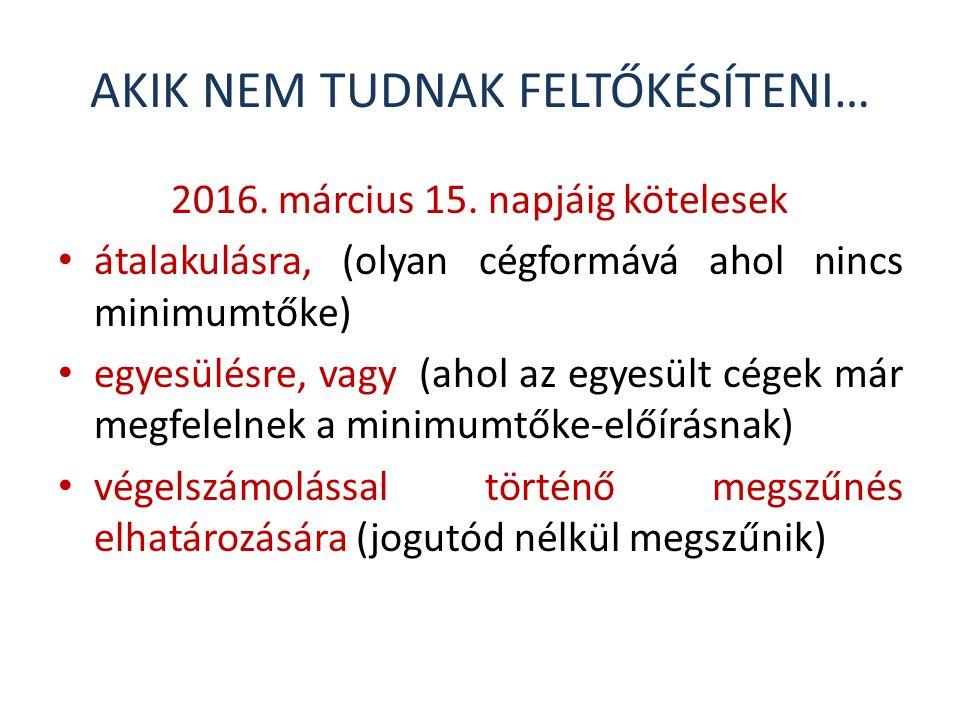 AKIK NEM TUDNAK FELTŐKÉSÍTENI… 2016.március 15.
