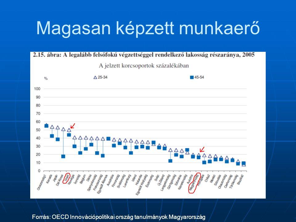 Magasan képzett munkaerő Forrás: OECD Innovációpolitikai ország tanulmányok Magyarország