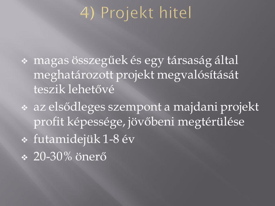  magas összegűek és egy társaság által meghatározott projekt megvalósítását teszik lehetővé  az elsődleges szempont a majdani projekt profit képessége, jövőbeni megtérülése  futamidejük 1-8 év  20-30% önerő