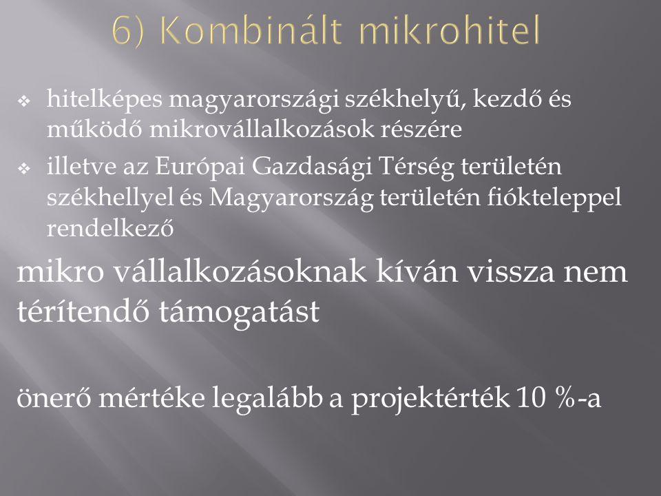 hitelképes magyarországi székhelyű, kezdő és működő mikrovállalkozások részére  illetve az Európai Gazdasági Térség területén székhellyel és Magyarország területén fiókteleppel rendelkező mikro vállalkozásoknak kíván vissza nem térítendő támogatást önerő mértéke legalább a projektérték 10 %-a