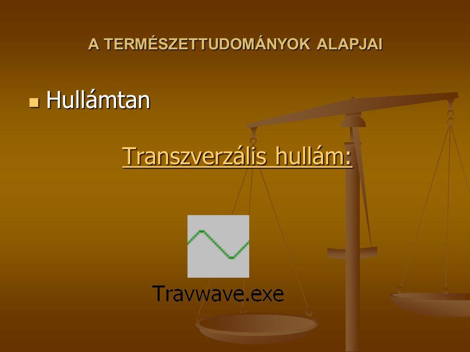 A TERMÉSZETTUDOMÁNYOK ALAPJAI Hullámtan Transzverzális hullám: Hullámtan Transzverzális hullám: Transzverzális hullám: Transzverzális hullám: