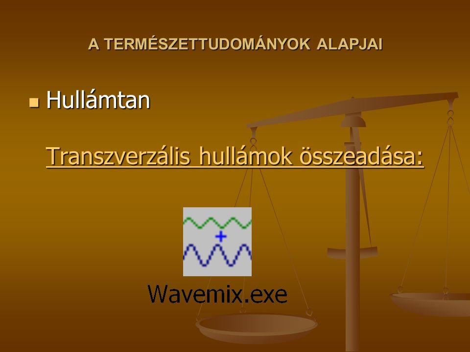 A TERMÉSZETTUDOMÁNYOK ALAPJAI Hullámtan Transzverzális hullámok összeadása: Hullámtan Transzverzális hullámok összeadása: Transzverzális hullámok össz