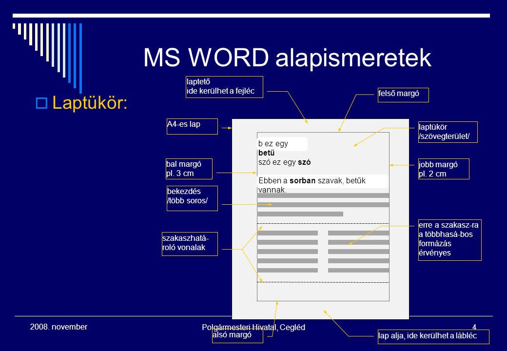 Polgármesteri Hivatal, Cegléd4 2008. november MS WORD alapismeretek  Laptükör: A4-es lap bal margó pl. 3 cm felső margó laptető ide kerülhet a fejléc