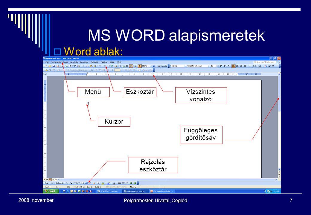 2008. novemberPolgármesteri Hivatal, Cegléd28 Számítástechnikai alapismeretek - Internet szörfözés
