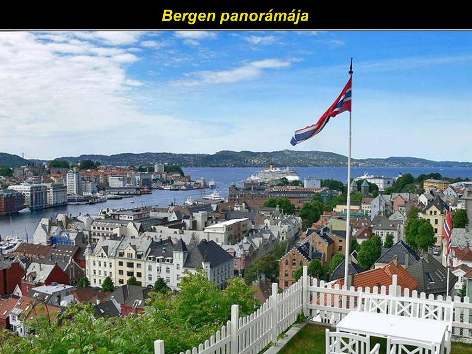 Háztetők Bergen régi városrészében