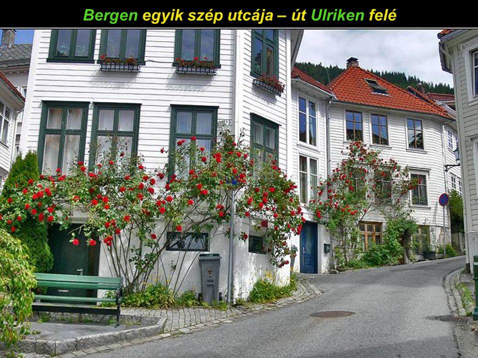 Bergen panorámája