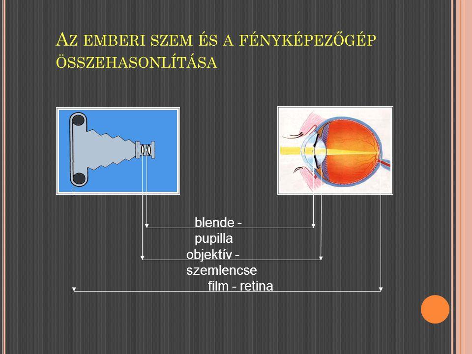 A Z EMBERI SZEM ÉS A FÉNYKÉPEZŐGÉP ÖSSZEHASONLÍTÁSA blende - pupilla objektív - szemlencse film - retina