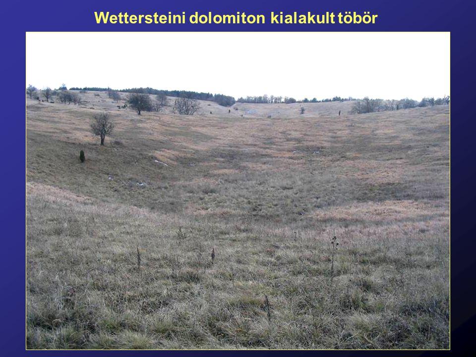 Wettersteini dolomiton kialakult töbör