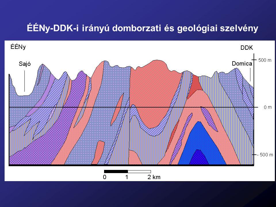 ÉÉNy-DDK-i irányú domborzati és geológiai szelvény