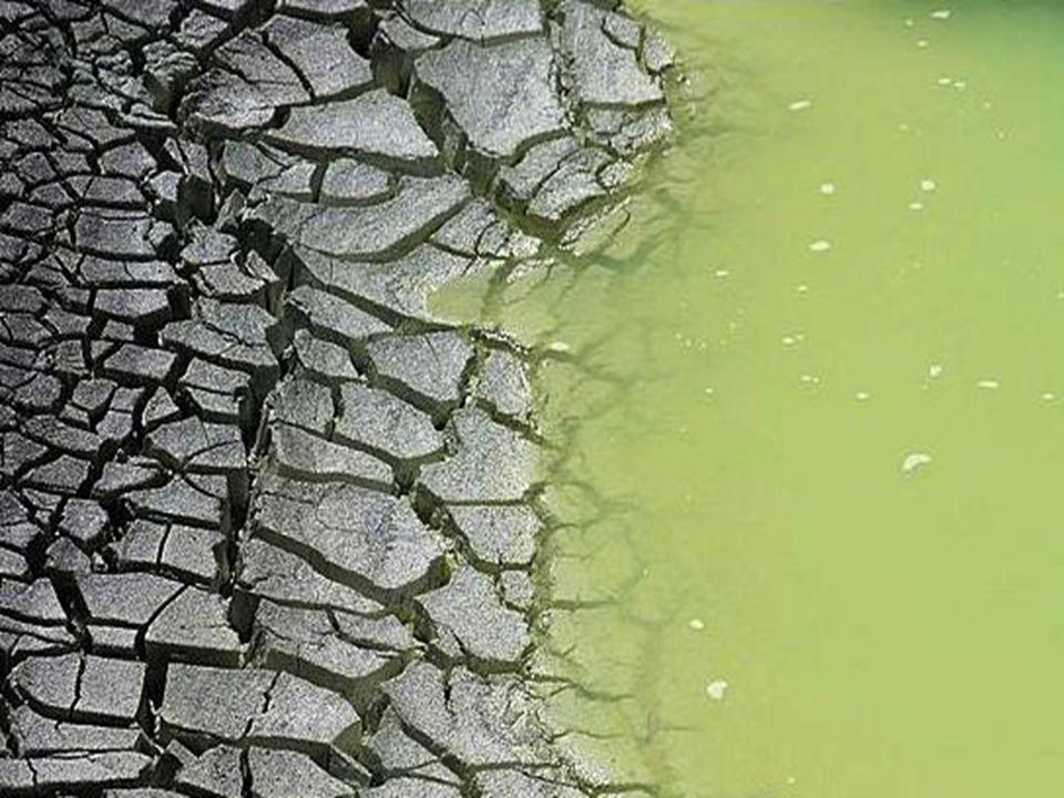 Zöldes kráter tó
