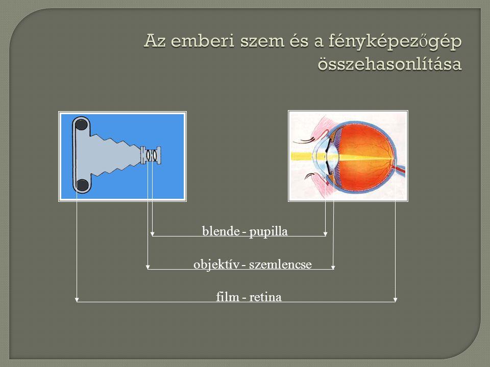 Az emberi szem és a fényképez ő gép összehasonlítása blende - pupilla objektív - szemlencse film - retina
