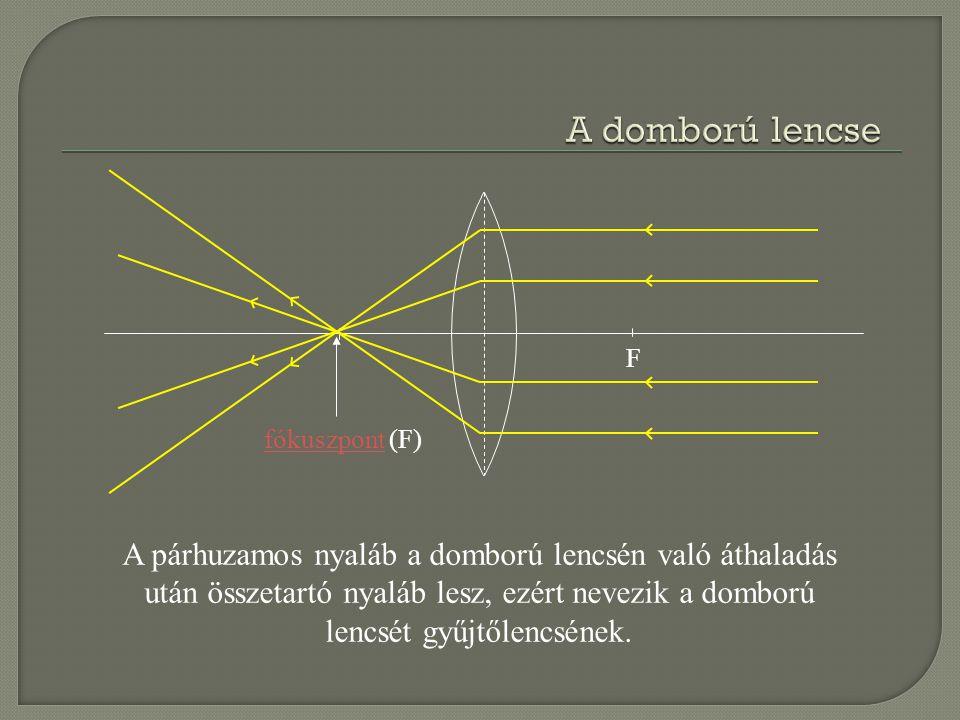 F fókuszpontfókuszpont (F) A párhuzamos nyaláb a homorú lencsén való áthaladás után széttartó nyaláb lesz, ezért a homorú lencsét szórólencsének nevezik.