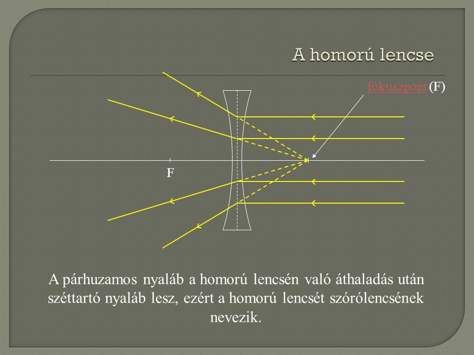 F fókuszpontfókuszpont (F) A párhuzamos nyaláb a homorú lencsén való áthaladás után széttartó nyaláb lesz, ezért a homorú lencsét szórólencsének nevez
