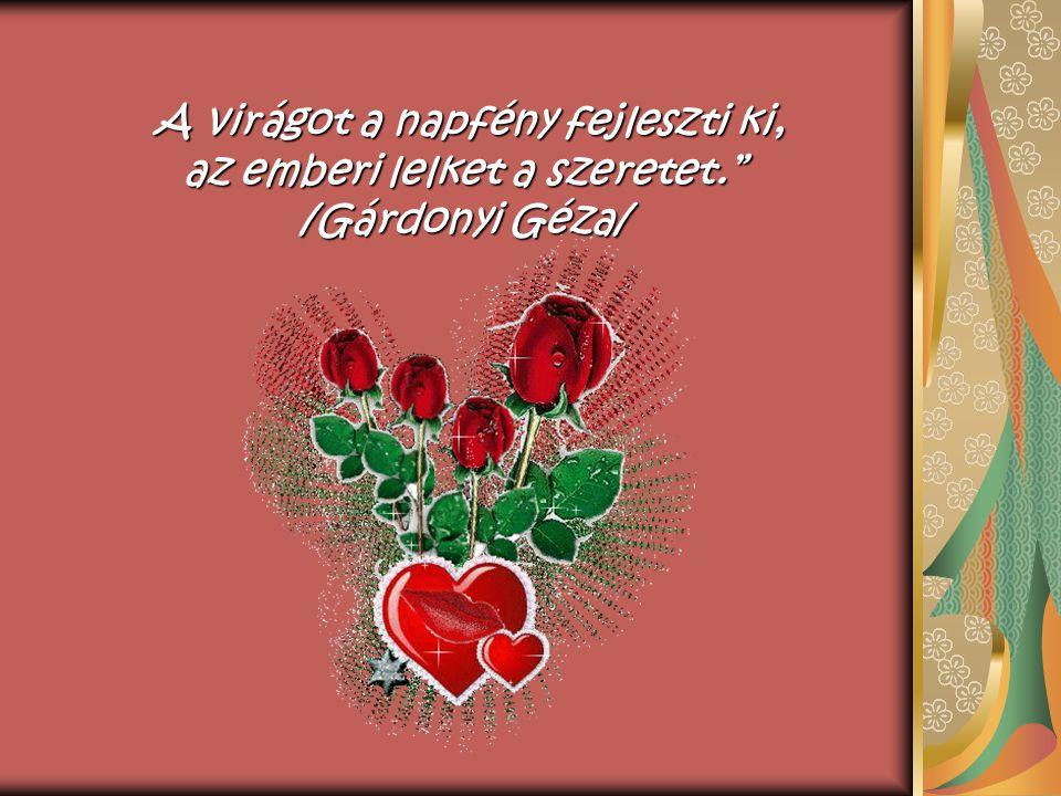 A virágot a napfény fejleszti ki, az emberi lelket a szeretet. /Gárdonyi Géza/ A virágot a napfény fejleszti ki, az emberi lelket a szeretet. /Gárdonyi Géza/