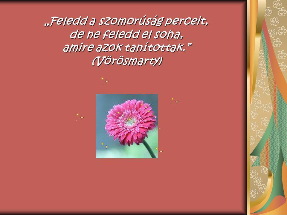 """""""Ha romba d ő lnek legszebb álmaid, reményeid ne hagyjanak el, mert sokszor a romok fölött a legszebb virágok nyílnak. (Goethe)"""