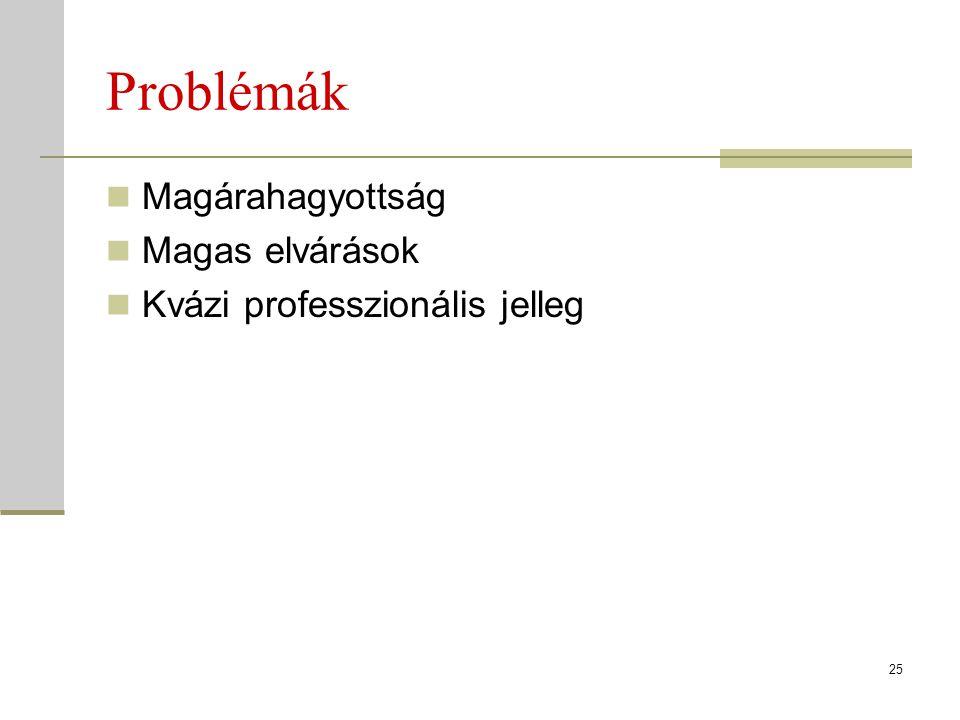 Problémák Magárahagyottság Magas elvárások Kvázi professzionális jelleg 25