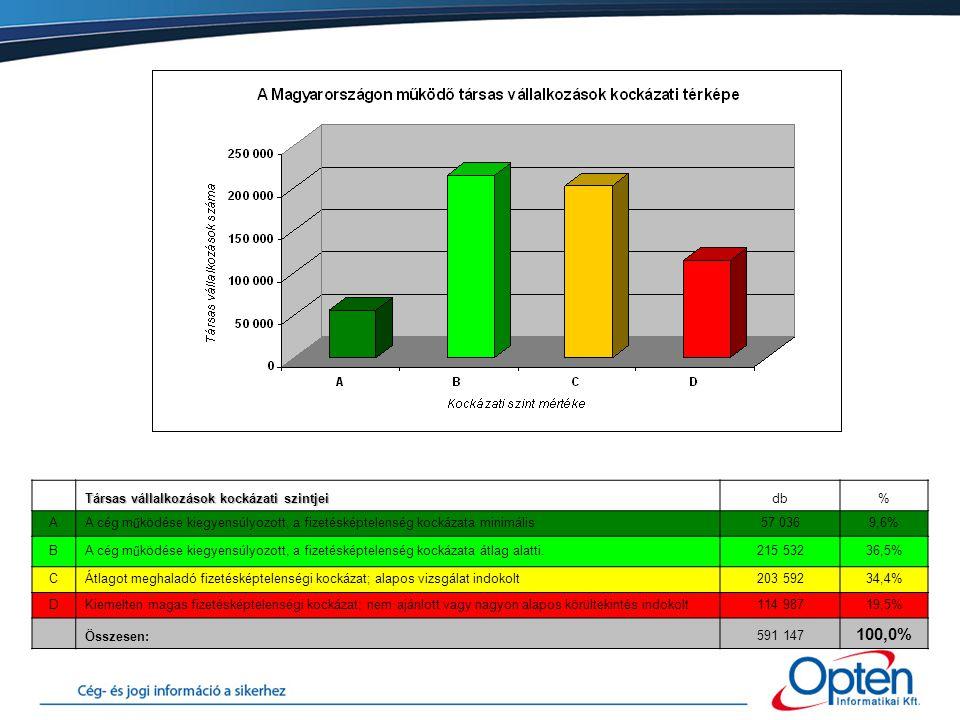 Társas vállalkozások kockázati szintjei db% AA cég működése kiegyensúlyozott, a fizetésképtelenség kockázata minimális57 0369,6% B A cég működése kiegyensúlyozott, a fizetésképtelenség kockázata átlag alatti.215 53236,5% CÁtlagot meghaladó fizetésképtelenségi kockázat; alapos vizsgálat indokolt203 59234,4% DKiemelten magas fizetésképtelenségi kockázat; nem ajánlott vagy nagyon alapos körültekintés indokolt114 98719,5% Összesen:591 147 100,0%