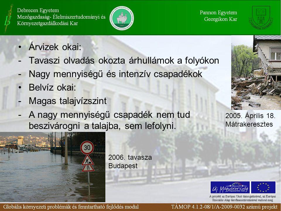 Árvizek okai: -Tavaszi olvadás okozta árhullámok a folyókon -Nagy mennyiségű és intenzív csapadékok Belvíz okai: -Magas talajvízszint -A nagy mennyisé
