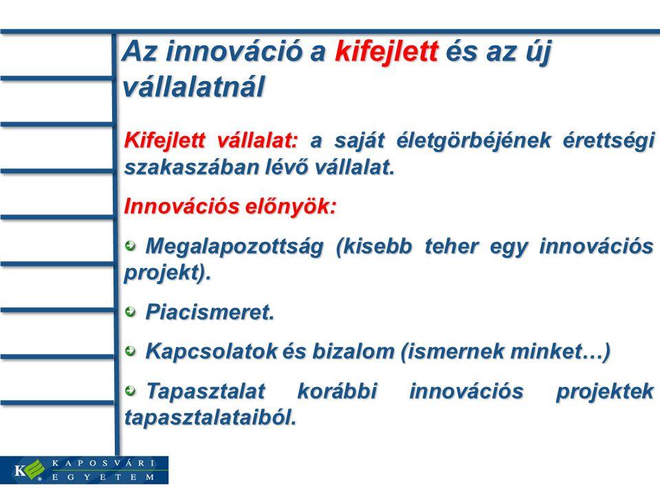 Az innováció a kifejlett és az új vállalatnál Kifejlett vállalat: a saját életgörbéjének érettségi szakaszában lévő vállalat.