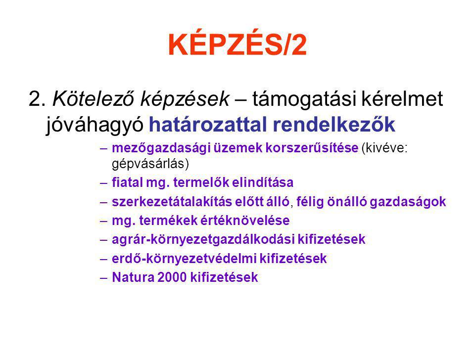 KÉPZÉS/2 2.