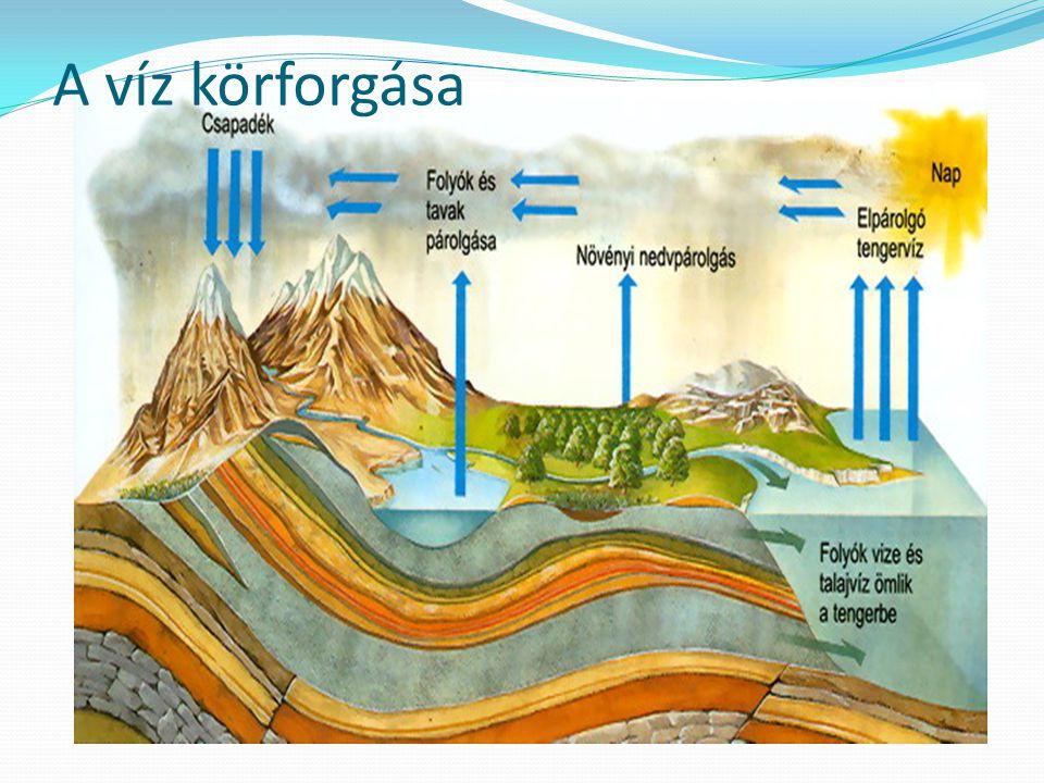 1.Hogyan szennyeződnek vizeink.