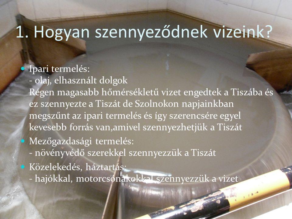 1. Hogyan szennyeződnek vizeink? Ipari termelés: - olaj, elhasznált dolgok Régen magasabb hőmérsékletű vizet engedtek a Tiszába és ez szennyezte a Tis