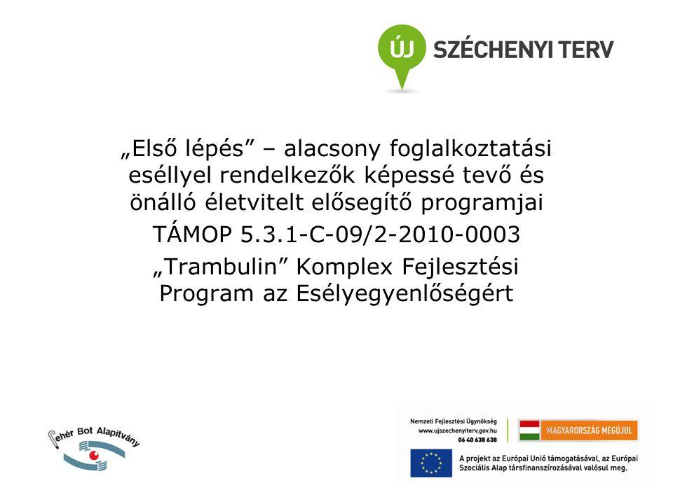 """""""Első lépés – alacsony foglalkoztatási eséllyel rendelkezők képessé tevő és önálló életvitelt elősegítő programjai TÁMOP 5.3.1-C-09/2-2010-0003 """"Trambulin Komplex Fejlesztési Program az Esélyegyenlőségért"""