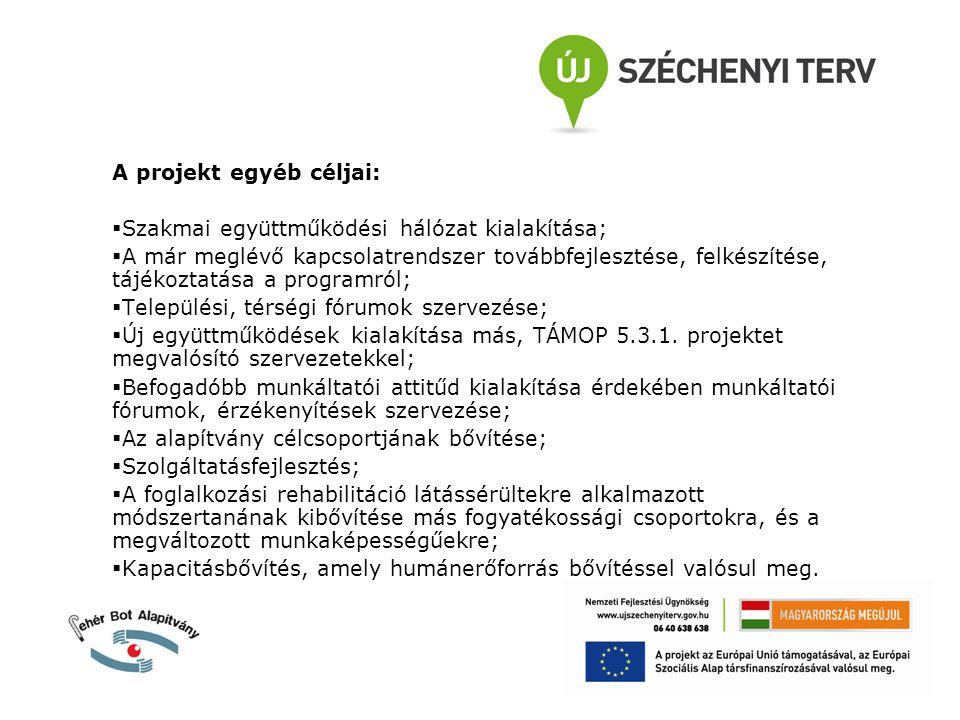 A projekt egyéb céljai:  Szakmai együttműködési hálózat kialakítása;  A már meglévő kapcsolatrendszer továbbfejlesztése, felkészítése, tájékoztatása a programról;  Települési, térségi fórumok szervezése;  Új együttműködések kialakítása más, TÁMOP 5.3.1.