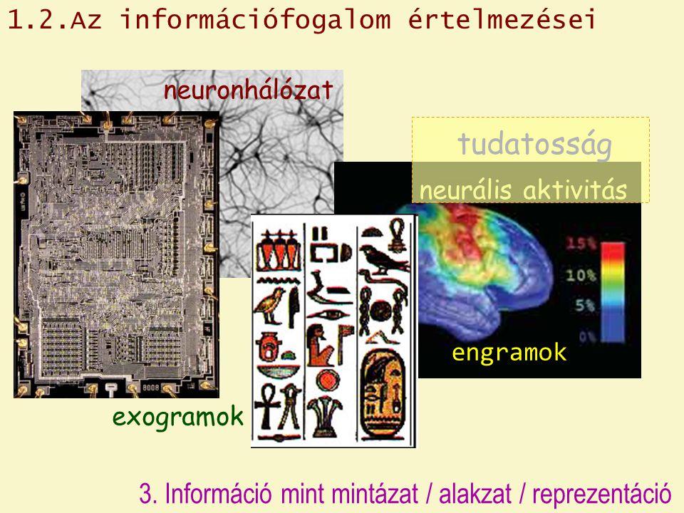 3. Információ mint mintázat / alakzat / reprezentáció neuronhálózat neurális aktivitás exogramok tudatosság engramok 1.2.Az információfogalom értelmez