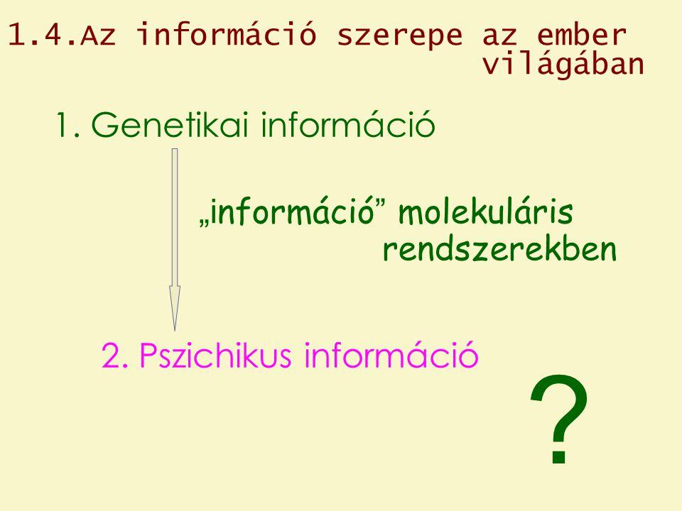1.4.Az információ szerepe az ember világában 1.