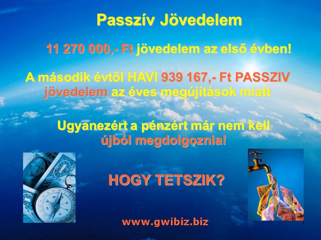 Passzív Jövedelem 11 270 000,- Ft jövedelem az első évben! A második évtől HAVI 939 167,- Ft PASSZIV jövedelem az éves megújítások miatt Ugyanezért a