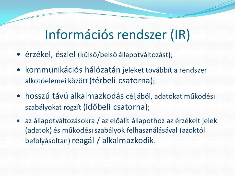 Információs rendszer (IR) érzékel, észlel (külső/belső állapotváltozást); kommunikációs hálózatán jeleket továbbít a rendszer alkotóelemei között (térbeli csatorna) ; hosszú távú alkalmazkodás céljából, adatokat működési szabályokat rögzít (időbeli csatorna) ; az állapotváltozásokra / az előállt állapothoz az érzékelt jelek (adatok) és működési szabályok felhasználásával (azoktól befolyásoltan) reagál / alkalmazkodik.