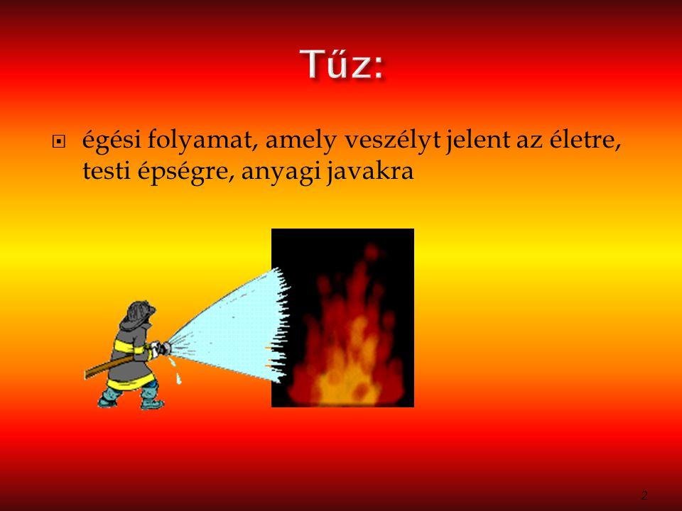  tűzesetek megelőzése, tűzoltási feladatok ellátása, tűzvizsgálat, valamint ezek feltételeinek biztosítása 3