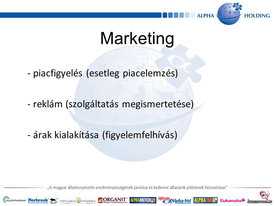 Marketing - piacfigyelés (esetleg piacelemzés) - reklám (szolgáltatás megismertetése) - árak kialakítása (figyelemfelhívás)
