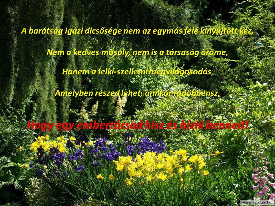 A barátság igazi dicsősége nem az egymás felé kinyújtott kéz, Nem a kedves mosoly, nem is a társaság öröme, Hanem a lelki-szellemi megvilágosodás, Ame