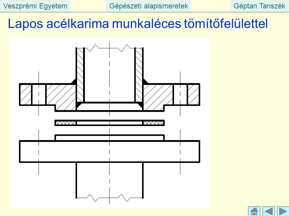 Veszprémi EgyetemGépészeti alapismeretekGéptan Tanszék Lapos acélkarima munkaléces tömítőfelülettel
