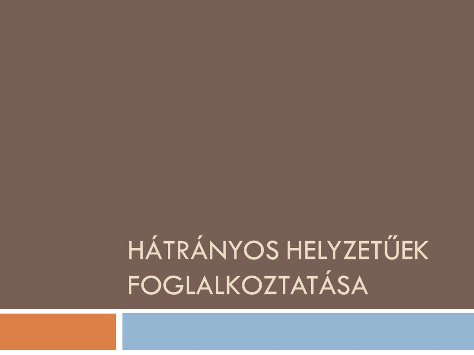 HÁTRÁNYOS HELYZETŰEK FOGLALKOZTATÁSA