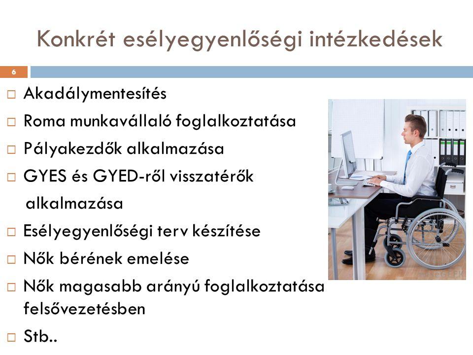 Konkrét esélyegyenlőségi intézkedések  Akadálymentesítés  Roma munkavállaló foglalkoztatása  Pályakezdők alkalmazása  GYES és GYED-ről visszatérők