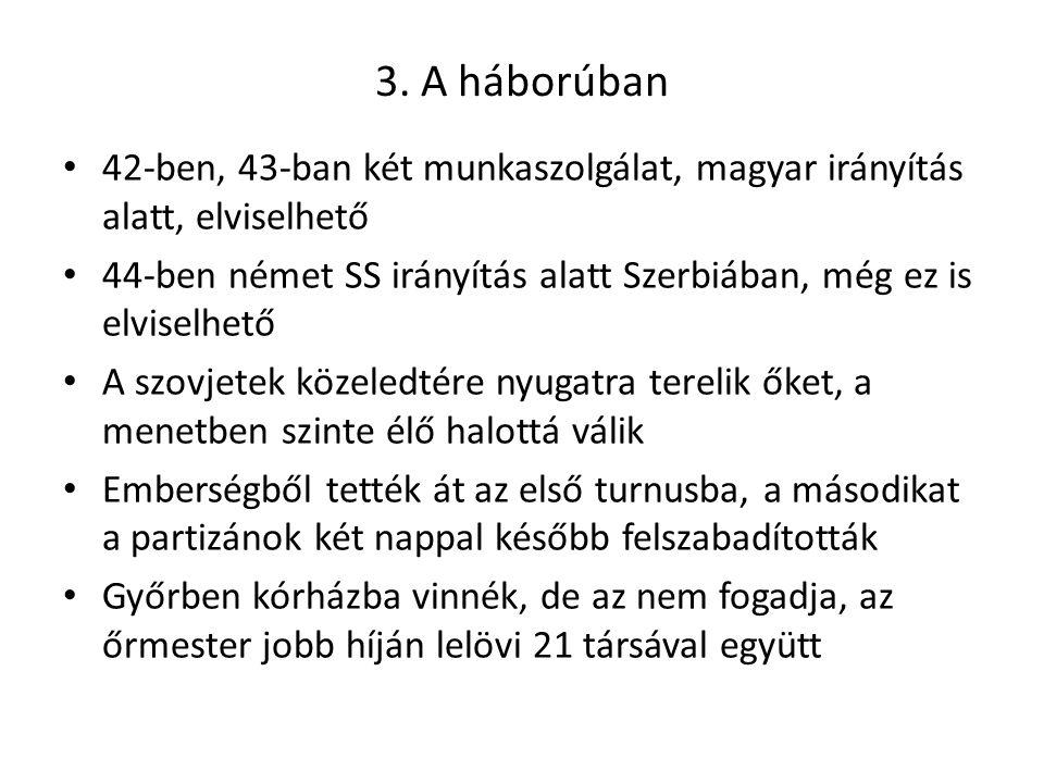 3. A háborúban 42-ben, 43-ban két munkaszolgálat, magyar irányítás alatt, elviselhető 44-ben német SS irányítás alatt Szerbiában, még ez is elviselhet