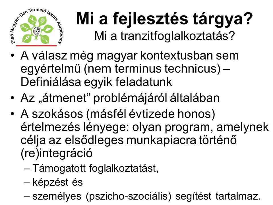 Mi a fejlesztés tárgya? Mi a tranzitfoglalkoztatás? A válasz még magyar kontextusban sem egyértelmű (nem terminus technicus) – Definiálása egyik felad