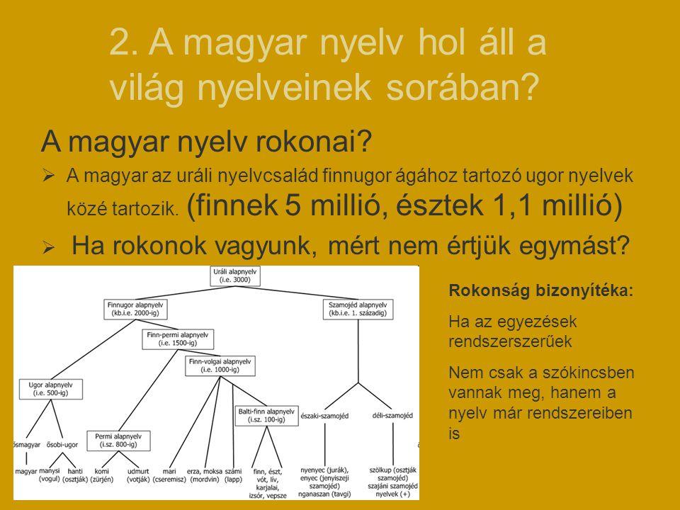 2. A magyar nyelv hol áll a világ nyelveinek sorában? A magyar nyelv rokonai?  A magyar az uráli nyelvcsalád finnugor ágához tartozó ugor nyelvek köz