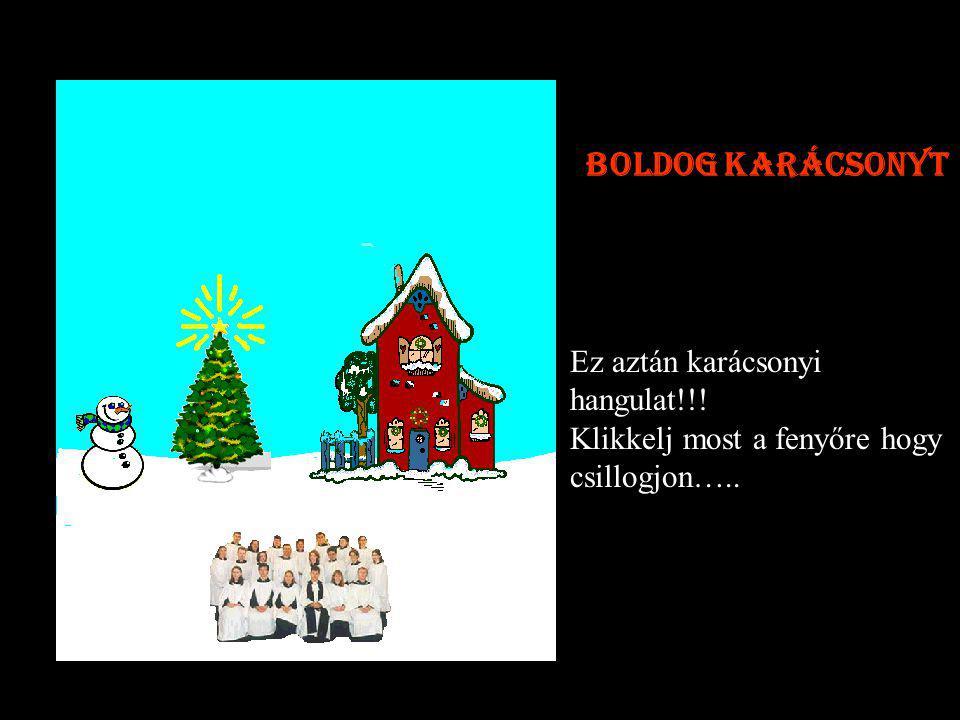 Ez aztán karácsonyi hangulat!!! Klikkelj most a fenyőre hogy csillogjon….. Boldog karácsonyt