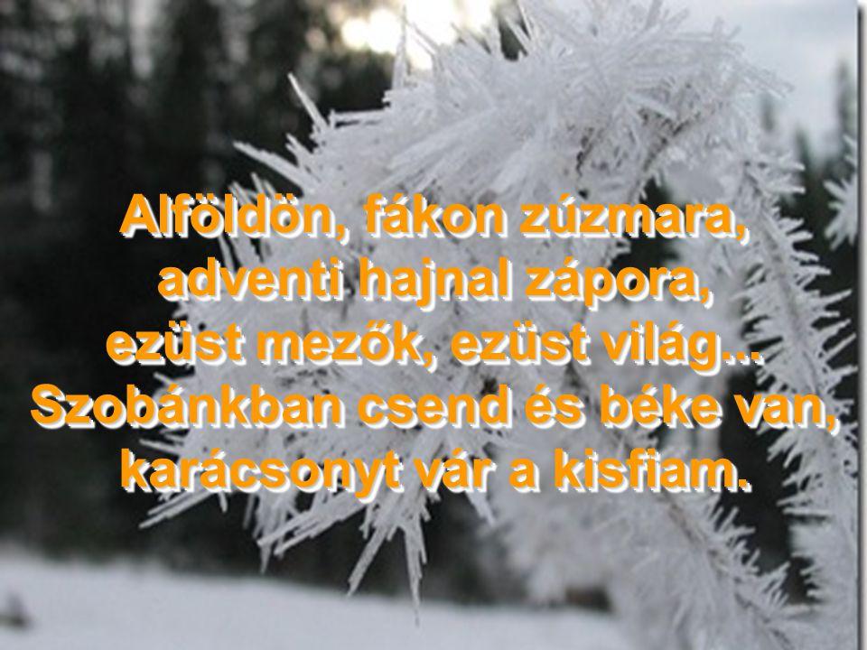 Karácsony fényei, jöjjetek, szívűnket békesség töltse meg: szeretnénk boldognak látszani, s lehetnénk egymásnak társai.