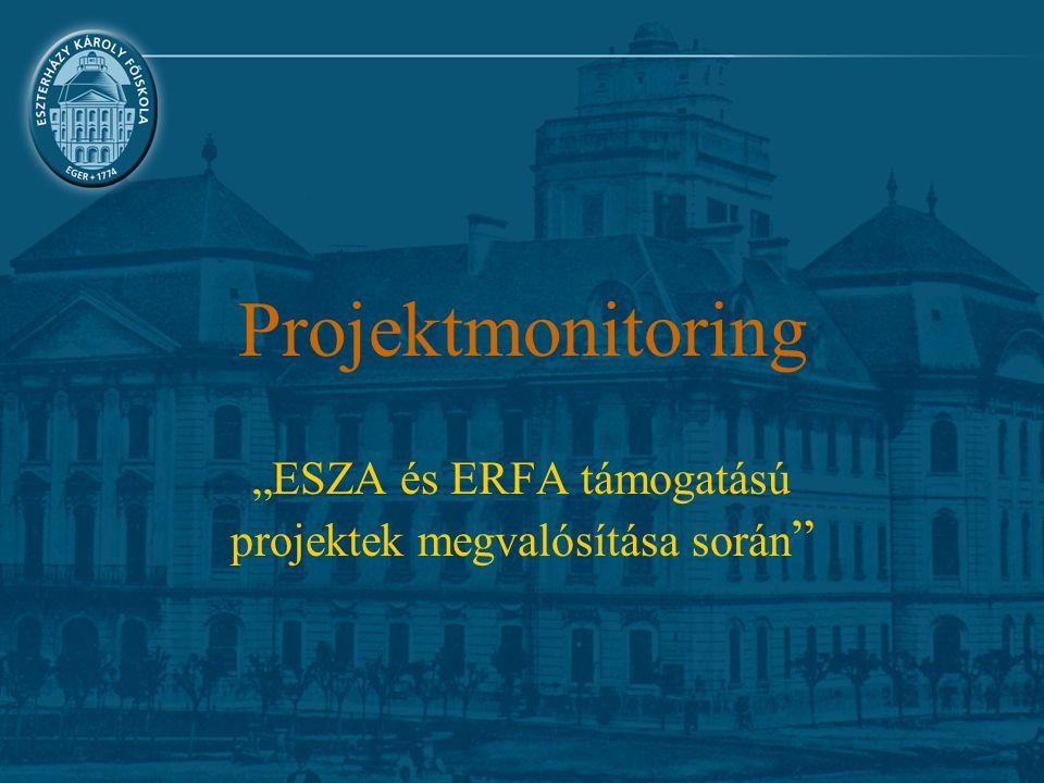 """Projektmonitoring """"ESZA és ERFA támogatású projektek megvalósítása során"""