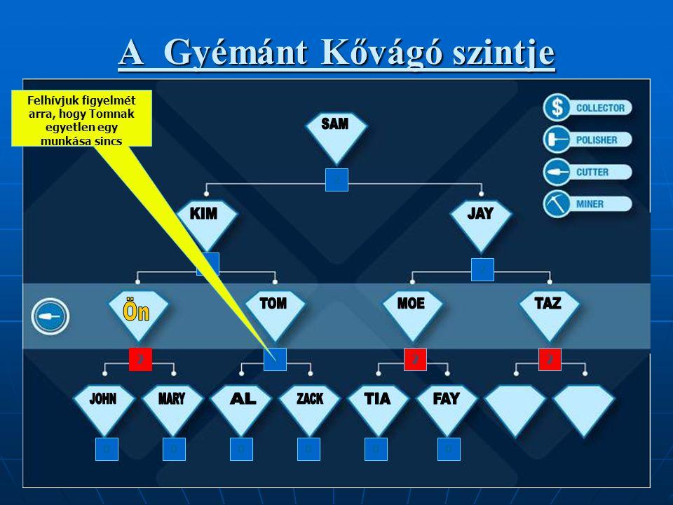 A Gyémánt Kővágó szintje 2 2 2 2202 000000 Felhívjuk figyelmét arra, hogy Tomnak egyetlen egy munkása sincs
