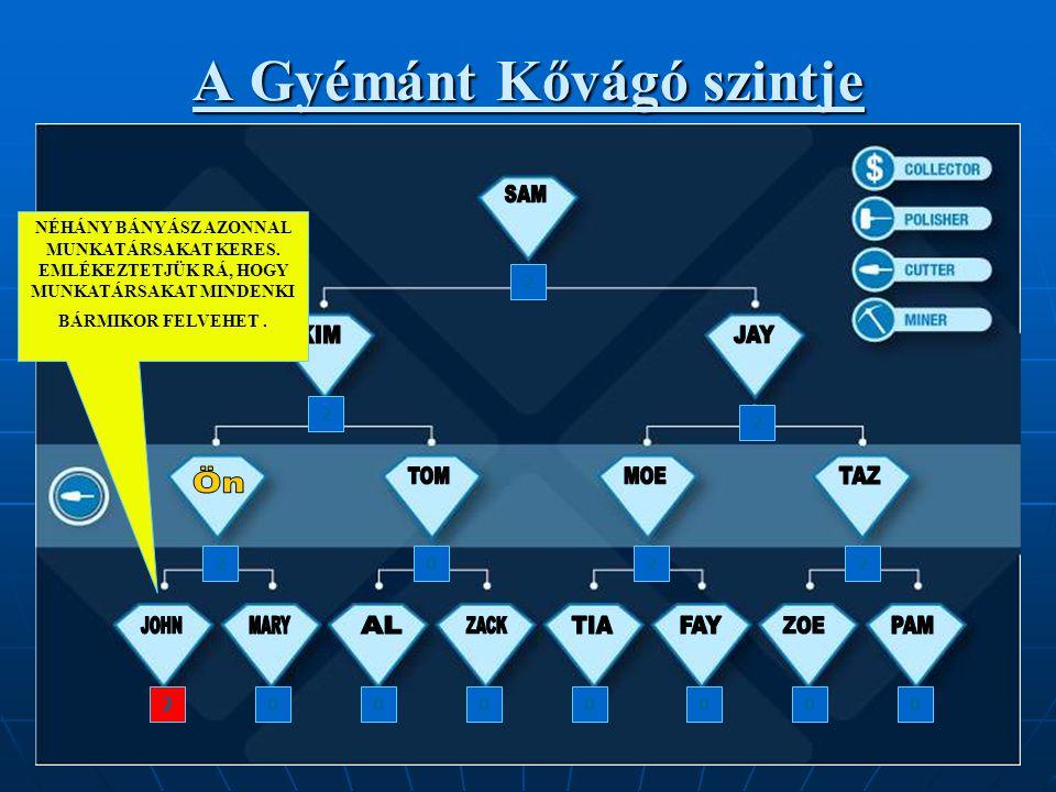 A Gyémánt Kővágó szintje 2 2 2 2202 000002 NÉHÁNY BÁNYÁSZ AZONNAL MUNKATÁRSAKAT KERES.