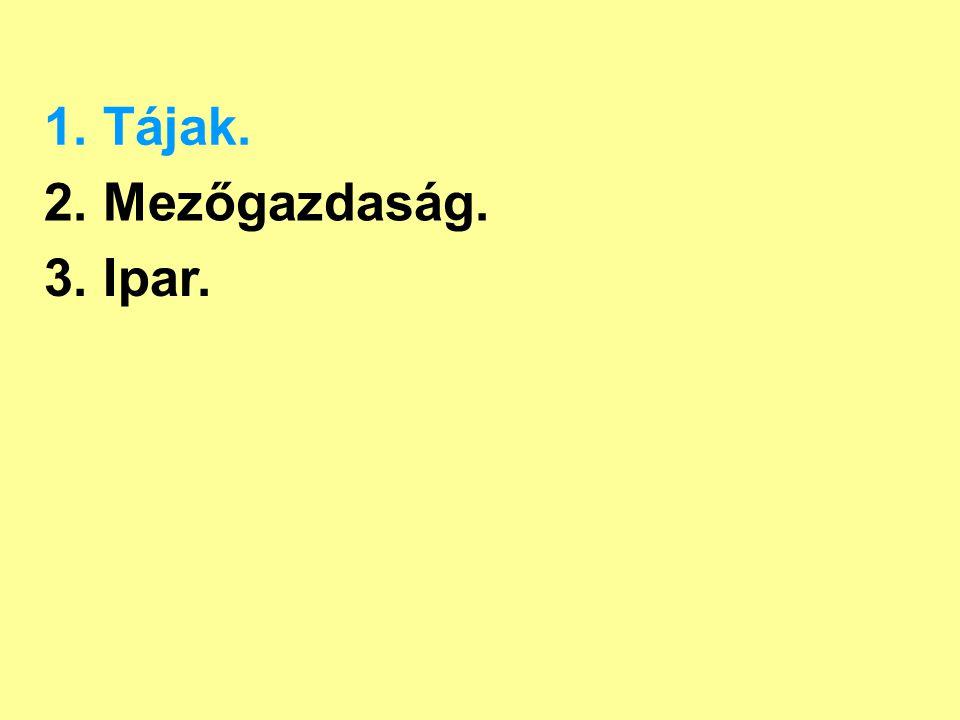 1.Tájak. Duna futóhomokos hordalékkúpok Kiskunság Tisza futóhomok - homokbuckák - szikes tavak 19.